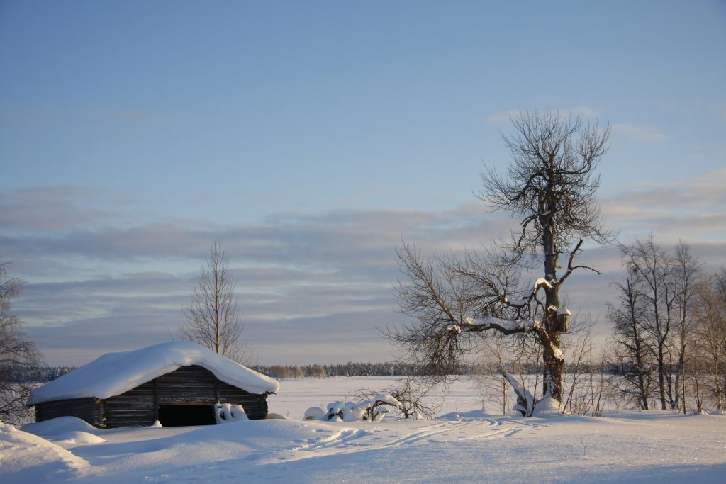 Finnland-Foto Über Land